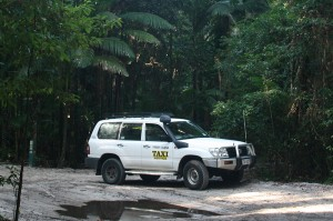 Taxi in Rainforest